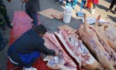 学校给学生发猪肉